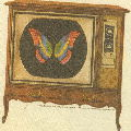 Philco 20/20 color TV giving color the way its meant to be bright sharp and natural