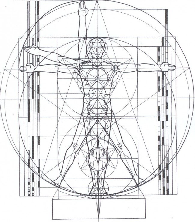 Figure-5-The-Vitruvian-Man-cropped-and-erased-measurements