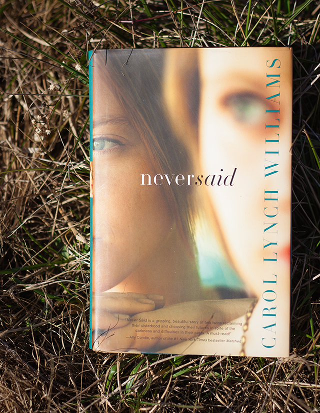 Neversaid Book Review