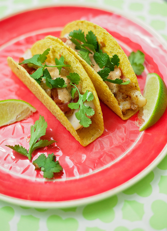 Cinco de Mayo Recipe Roundup!
