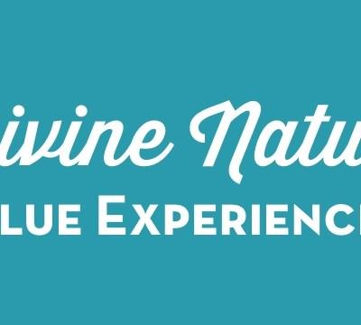 Divine Nature Value Experience 4