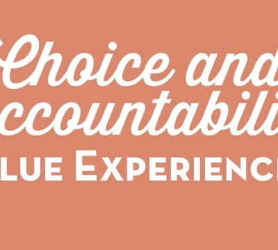 Choice and Accountability Value Experience 2