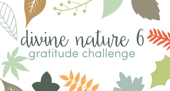 Divine Nature 6 Gratitude Challenge for Thanksgiving