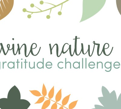 Divine Nature 6 Gratitude Challenge for Thanksgiving