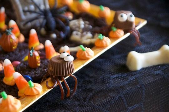 Haunted Halloween Cookie House Spiders