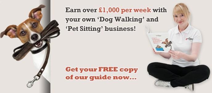 Dog Walking Franchise | Pet Sitting Franchise | 30 Day ...