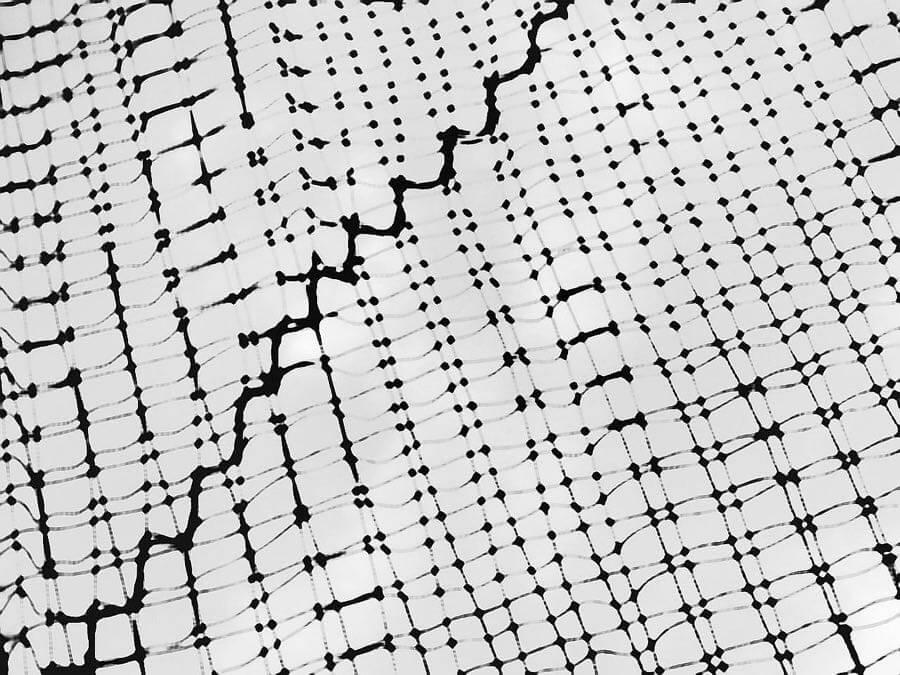 tanakawho - Net abstract