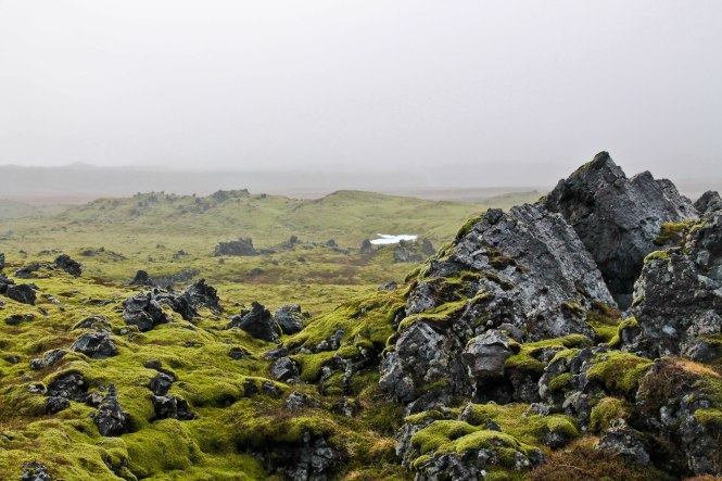 17 Reasons to Fall in Love with Iceland this Year - the pink backpack travel blog
