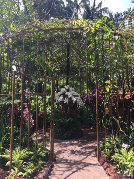 National Orchid Garden Gate
