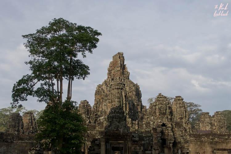 Angkor Wat Bayon View Tree
