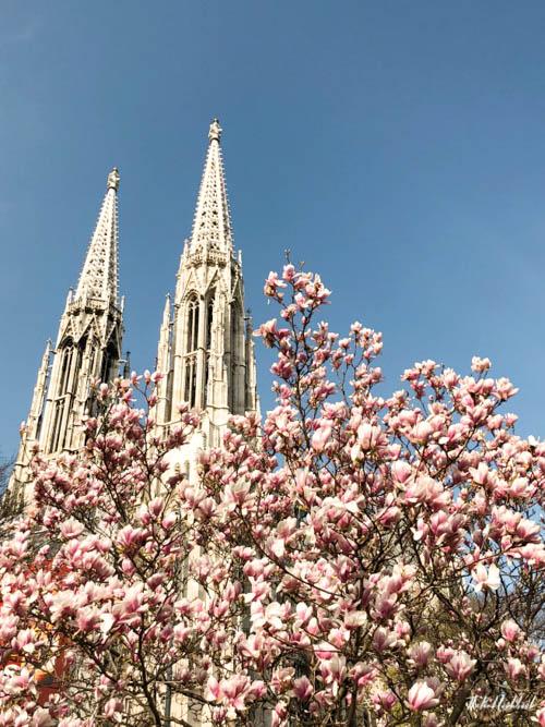 Vienna Spring Votive Church