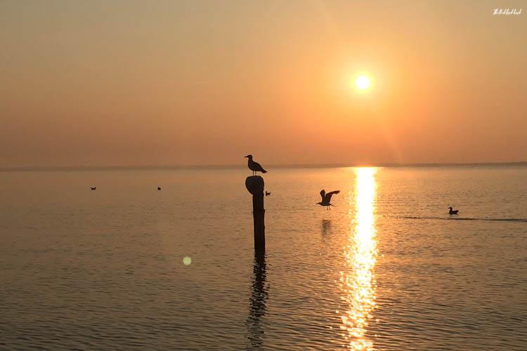 Neusiedler See Sunset View