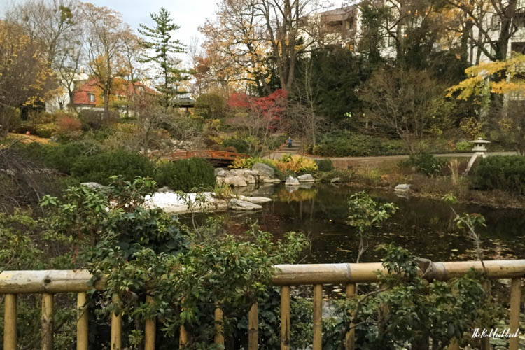Things to Do in Vienna in Autumn Setagaya Park