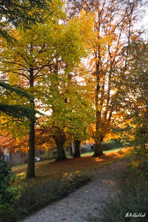 Winterthur Switzerland Day Trip from Zurich Autumn Walk