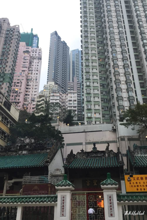 Hong Kong Ultimate Guide All You Need to Know for Your Trip to Fragrant Harbour View Man Mo Temple
