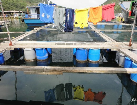 My Favourite Hong Kong Pictures Shirts Floating Restaurant Sai Kung