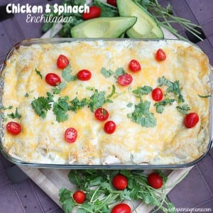 Chicken & Spinach Enchilada recipe made easy using the crock pot!