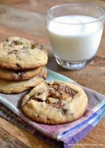 Fill these Thick and Chewy Candy Bar Cookies with your favorite sweets! | Hello Little Home