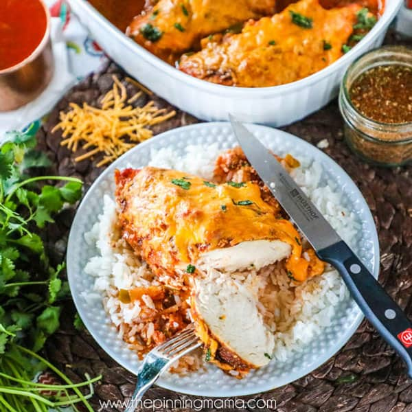 Quick and Easy Dinner Idea- Salsa Chicken Bake - Just 4 ingredients, one dish and 15 minutes of prep! My whole family loves this supper!