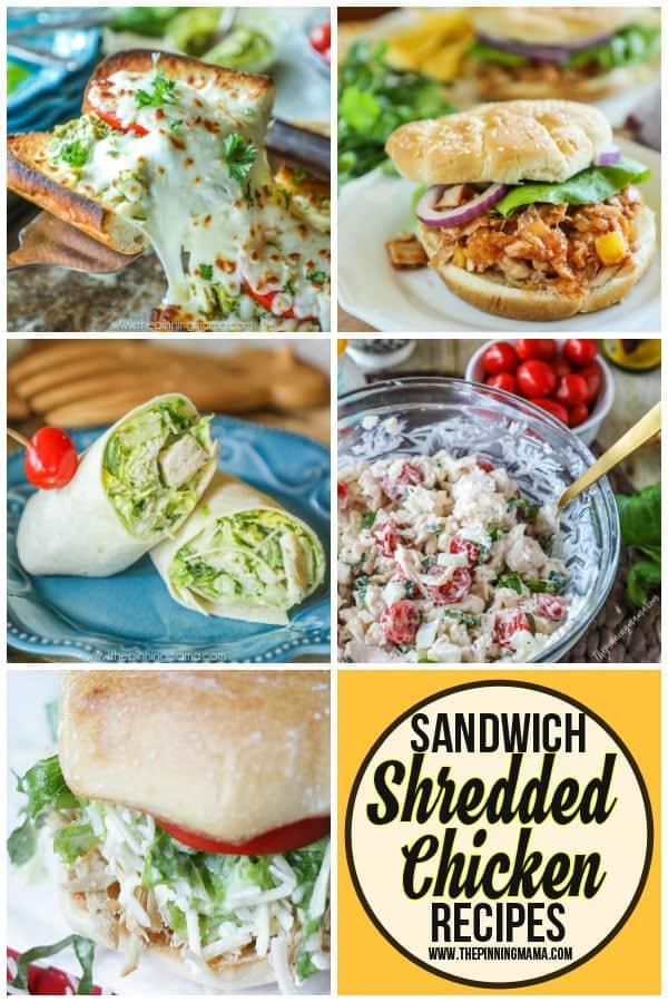 Shredded Chicken sandwich recipes