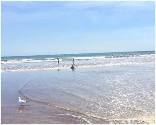 Enjoy beautiful views and boogie boarding waves at Easton's Beach.