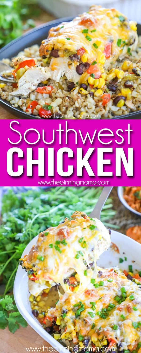 The BEST Southwest Chicken - Only 1 Dish!