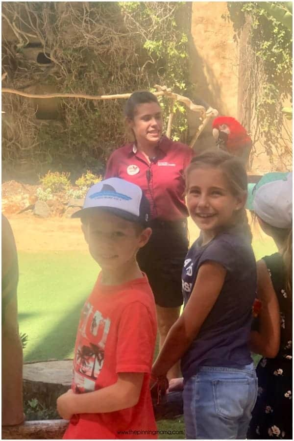The San Diego Zoo Safari Park with Kids.