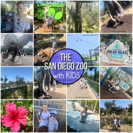 The San Diego Zoo with Kids.