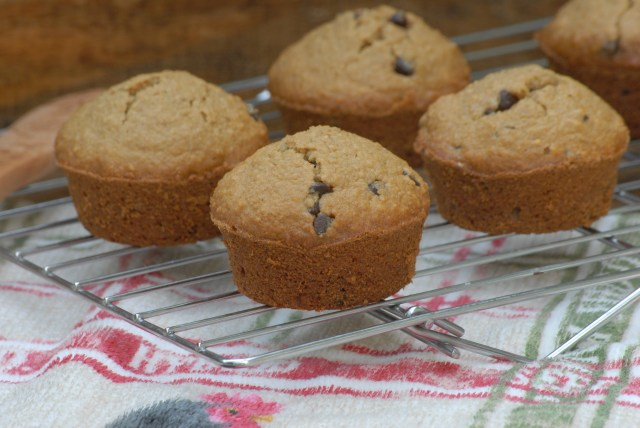 Gluten-free Chocolate Chip Muffins- These gluten-free muffins taste and smell delicous! They are gluten-free, low in sugar, and low imflammatory.