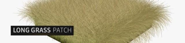 _Long-Grass-Patch