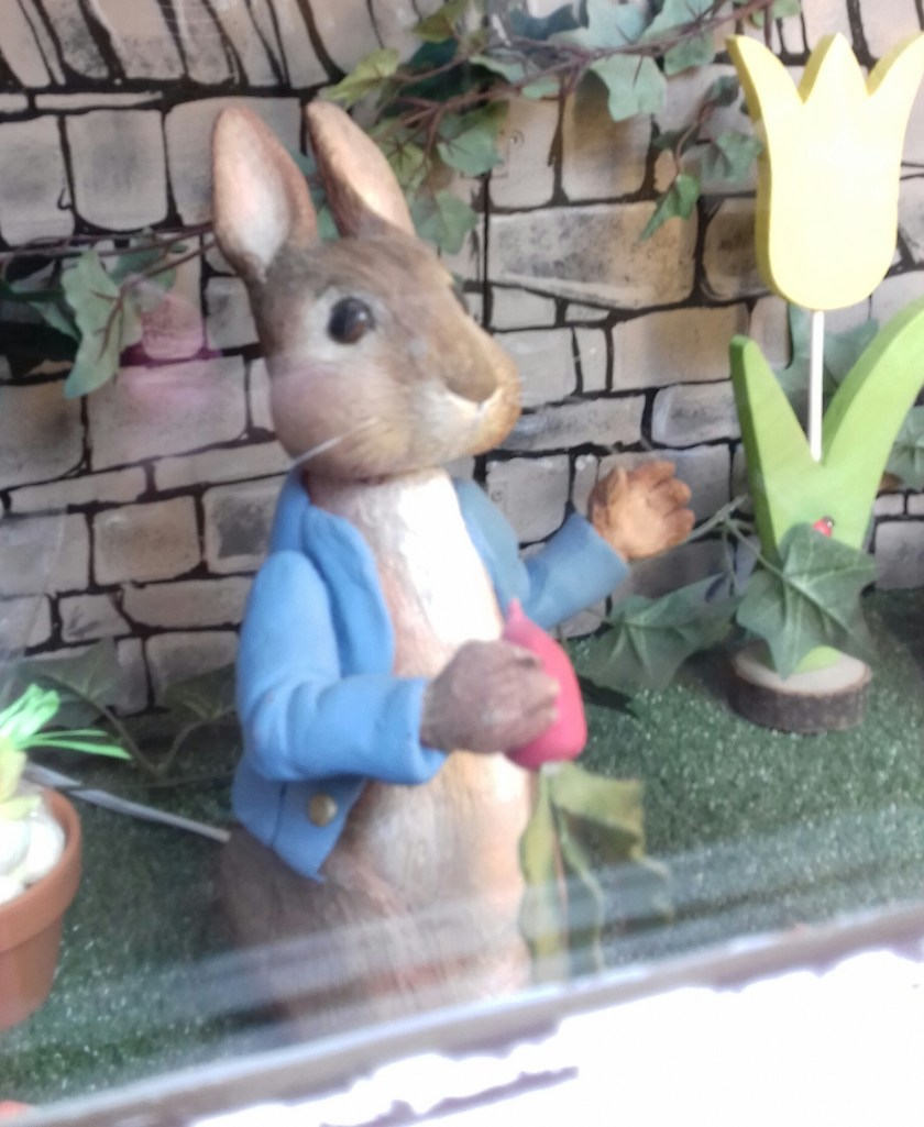 Peter rabit in the window of the Beatrix Potter centre.