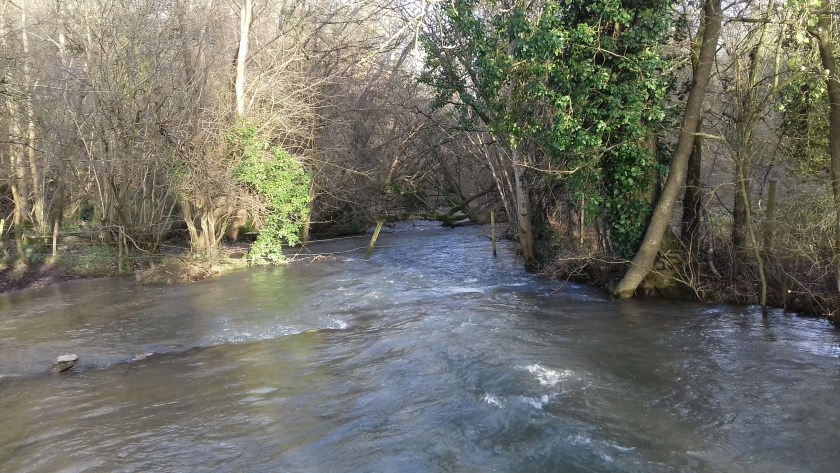 The By brook was very full. #Castle Coombe