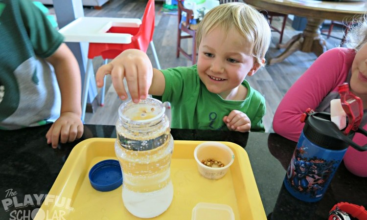 3 Science Based Play Ideas to Keep Toddlers Engaged