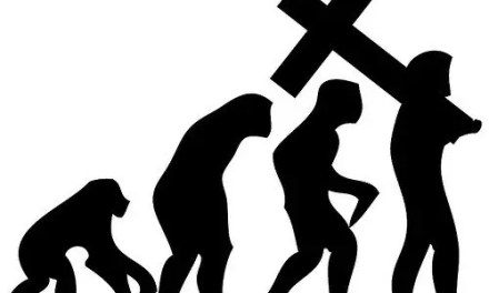 Evolution: Good for (my) Theologies