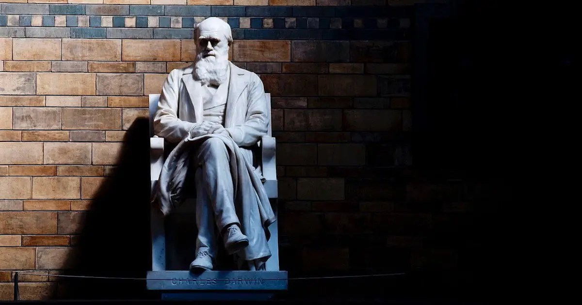 Skepticism About Darwinian Evolution Grows as 1,000+ Scientists Share Their Doubts
