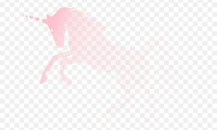 What is the Invisible Pink Unicorn argument?