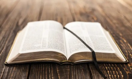Apologetics in the Bible
