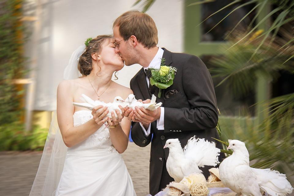 Fotografii și Poze Superbe De Nuntă 50 De Imagini Thepoc