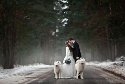 Fotografii și poze superbe de nuntă (50 de imagini)
