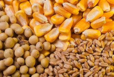 Lista companiilor care utilizează produsele modificate genetic și care conțin substanțe chimice ale Monsanto