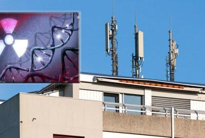 De ce nu este bine să trăiești în imediata apropiere a antenelor-releelor de telefonie mobilă?