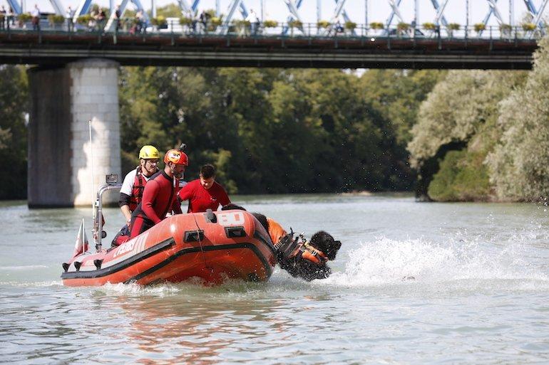 Trainer Cani Eroi Show salvataggio nel fiume