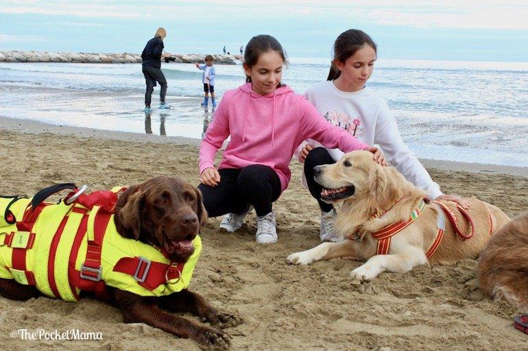cani salvataggio in mare