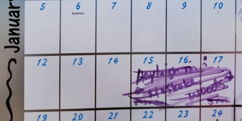 Calendar showing cancelled trip dates.