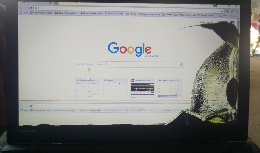 This Broken Laptop Screen Looks Like A Penguin The Poke