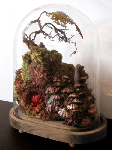 amy gross vivarium