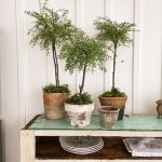 Easy Diy Topiaries You Can Make Yourself The Ponds Farmhouse