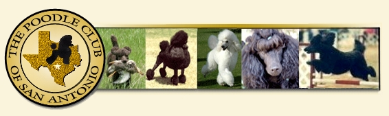 The Poodle Club of San Antonio Logo with Poodle Image Bar