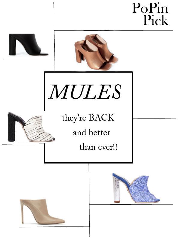 Mules 101