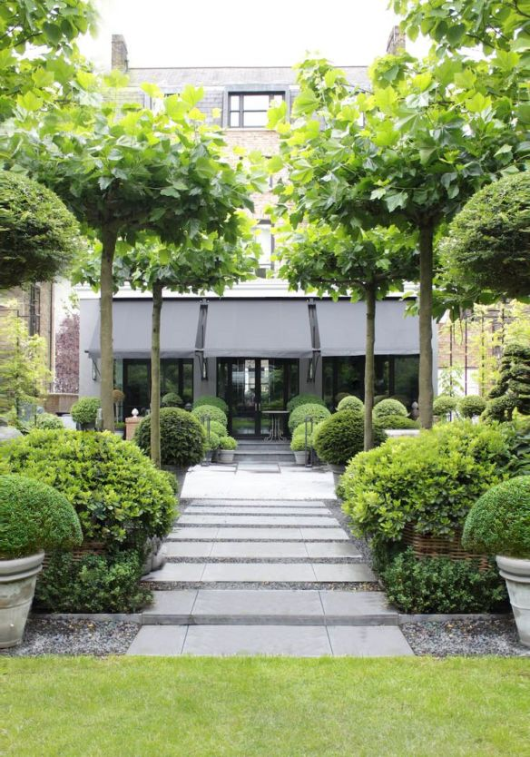 Design Green Landscapes: A Talent With Boxwood